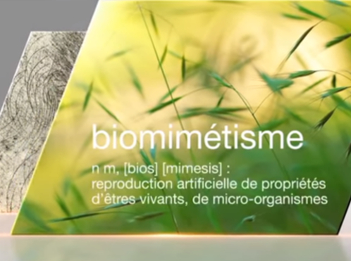 Ville biomimétique, Ville de demain